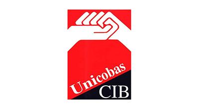 UNICOBAS-LINK.RECUPERO.ASSEMBLEA.ON.LINE.4.OTTOBRE.DOPO.CRASH.FACEBOOK